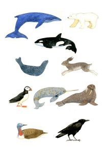 ciartic animals and birds copy
