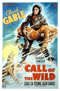 Call of the Wild film poster. United artist 1935.
